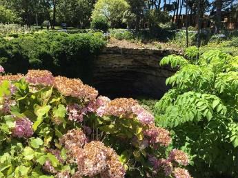 Hydranga sinkhole