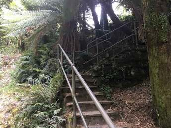 Tarra Falls staircase
