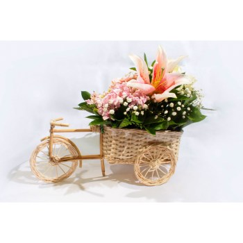 Lily Mini Bike - Hatiku Florist Jakarta