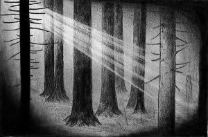 forest tree drawing easy pencil drawings dark trees inspiration paintingvalley hative within heart drawi