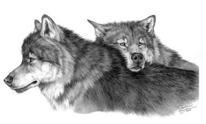 wolf drawings drawing cool pencil animal template twin wolves draw devotion eternal hative inspiration templates pdf deviantart pages