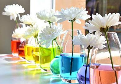 Spring Kitchen Table Centerpiece Ideas
