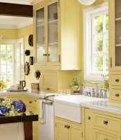 Kitchen Cabinet Paint Colors and How They Affect Your Mood ...