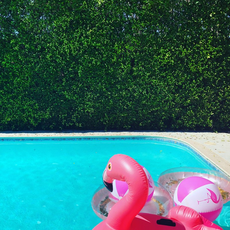 The Perfect Bachelorette Party in Palm Springs!