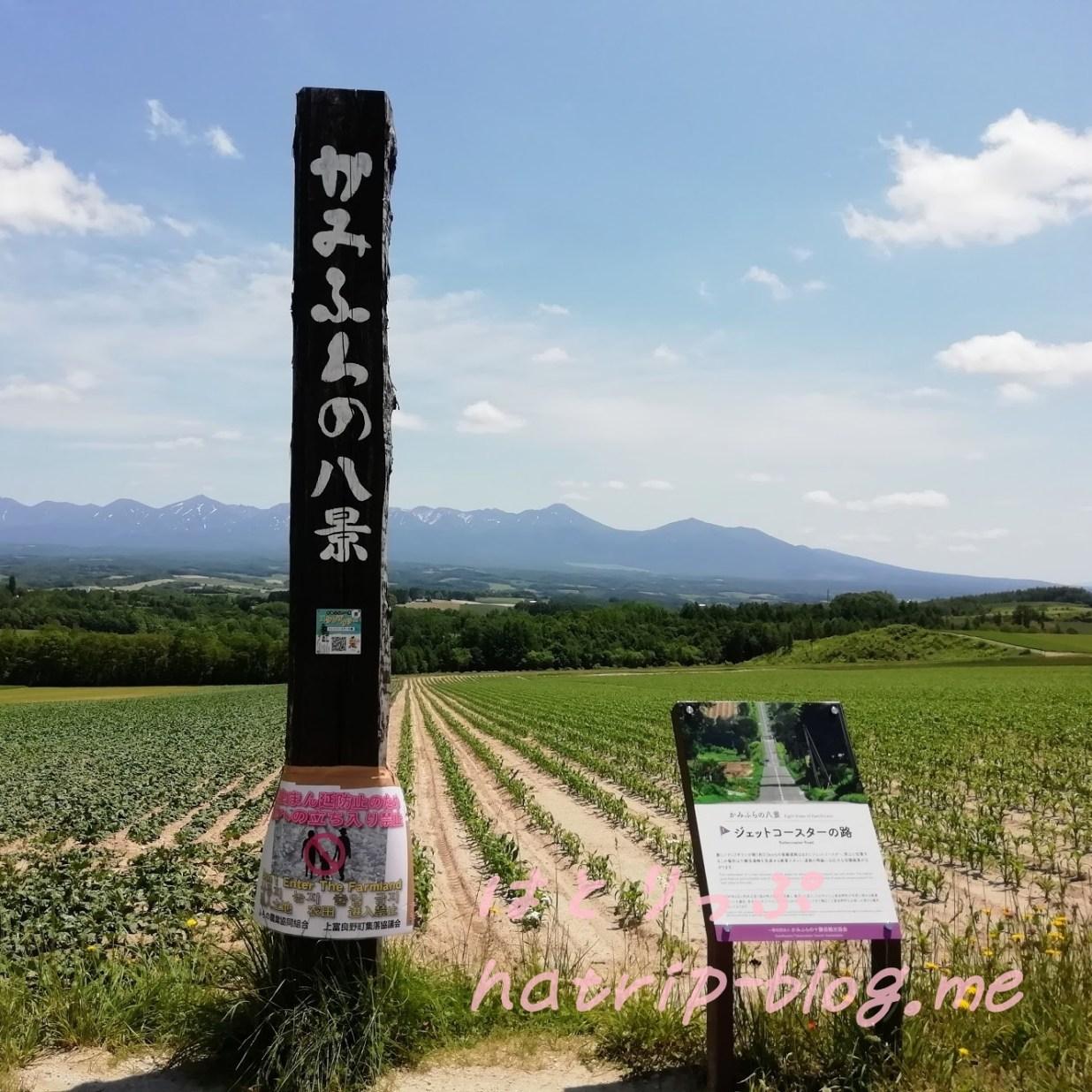 北海道 上富良野町 ジェットコースターの路 かみふらの八景