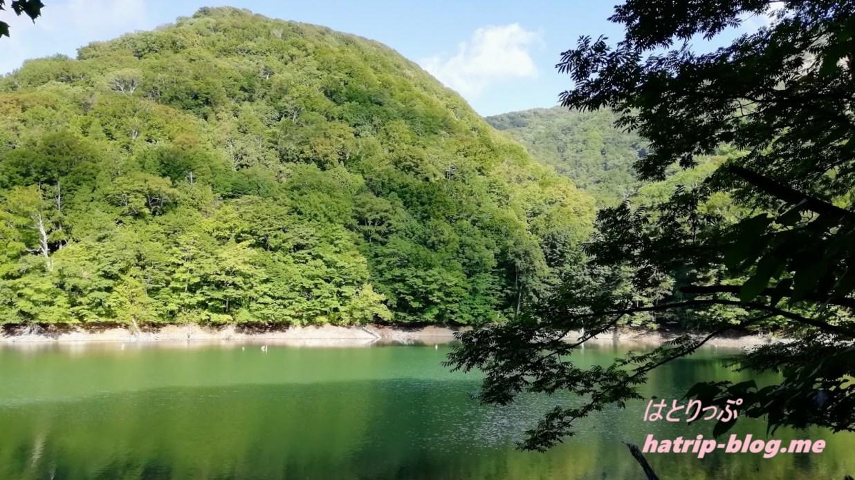 青森県西津軽郡 白神山地 十二湖 鶏頭場池