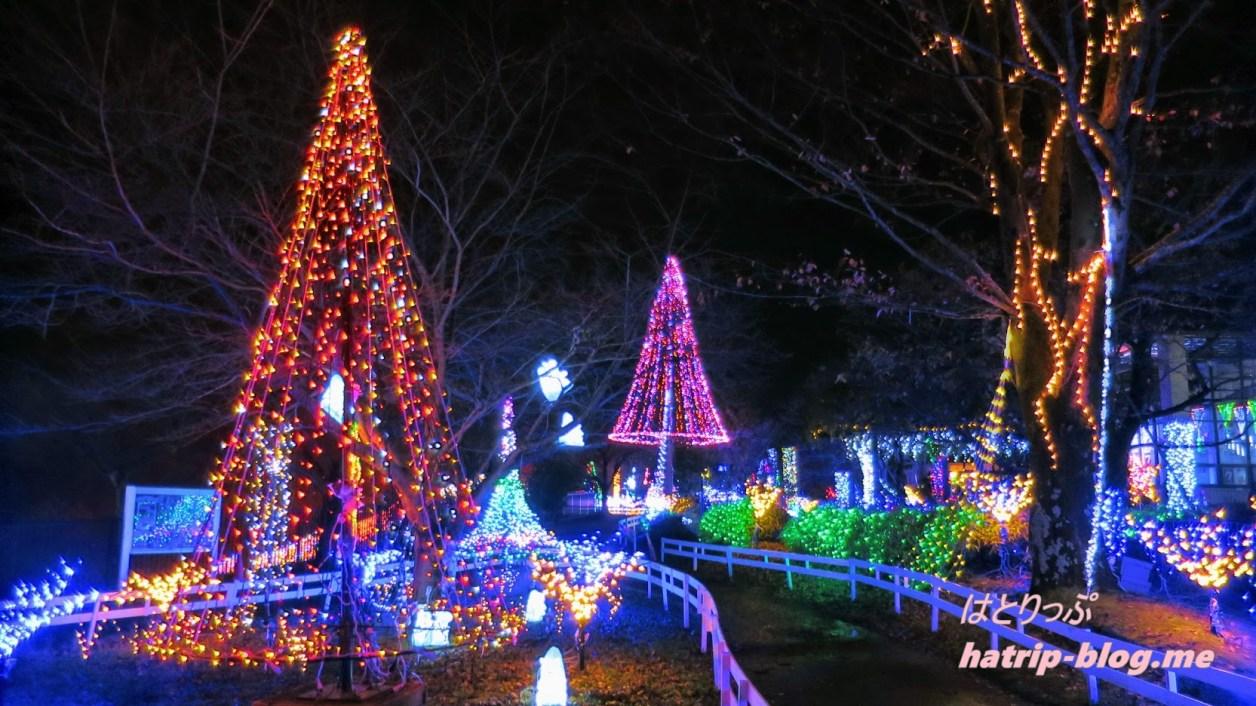 宮ケ瀬ダム クリスマス イルミネーション イルミネーションロード