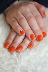 The Lovely Orange