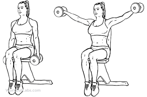 Seated_Lateral_Dumbbell_Raise_F_WorkoutLabs