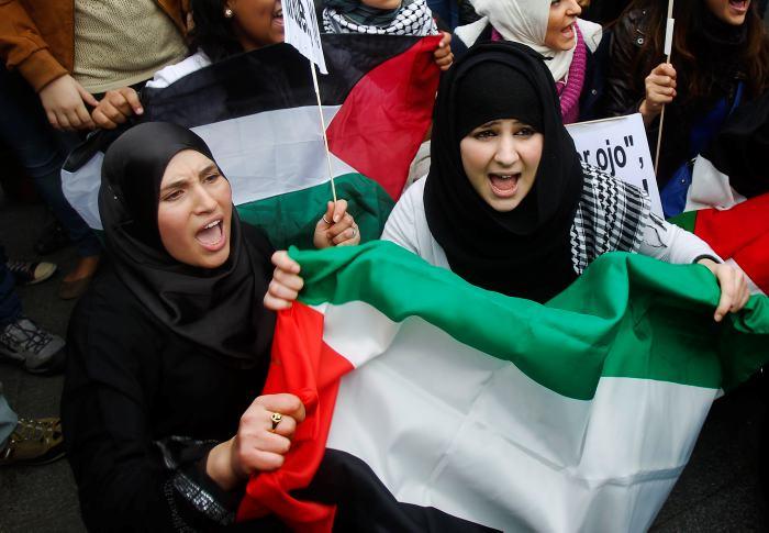 Resultado de imagen para Hanan Ashrawi donaciones palestinas