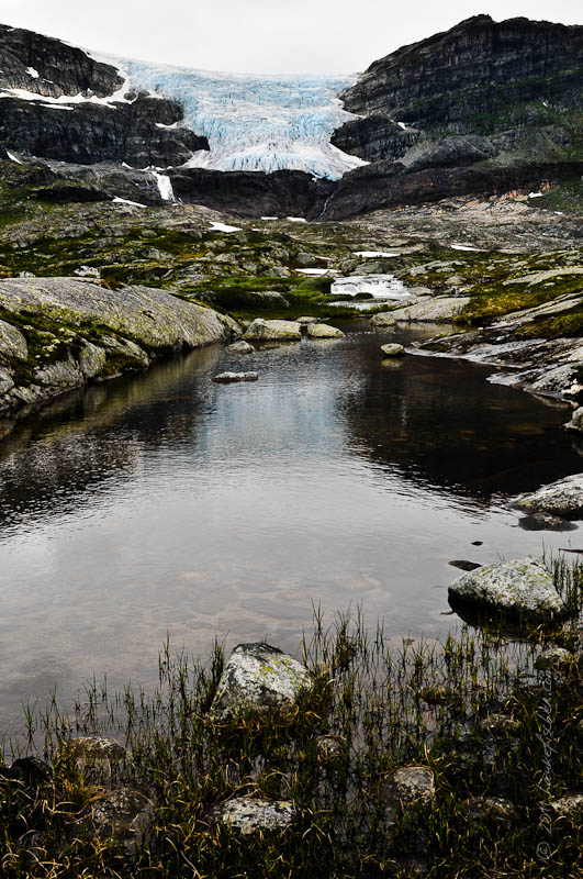 vielles glaces bleues d'une des langues glaciaires du Hardangerjøkulen
