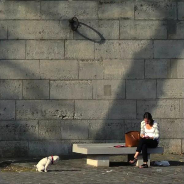 en faisant des courriels. Quai d'Anjou, Paris 4e.