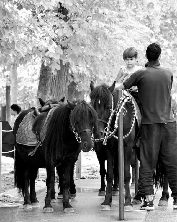 aller au poney