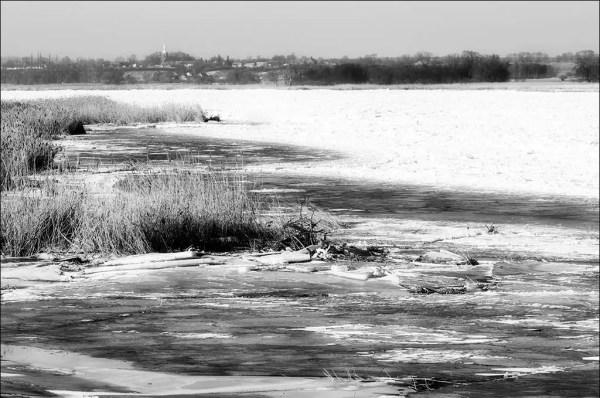 débâcle sur l'Oder. Vue vers le village de Czelin en Pologne