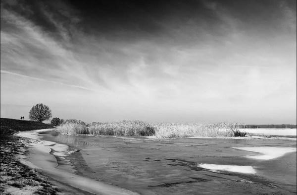berges de l'Oder près de Gross-Neuendorf, Lande Brandebourg, Allemagne