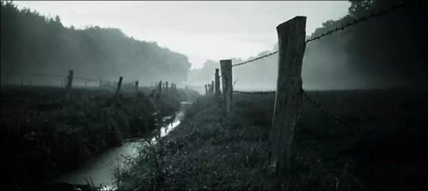 Clôtures dans le brouillard. Cornouailles. 2006.
