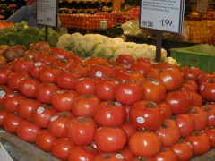 Florida Tomato Shipments are Increasing After Rocky Start