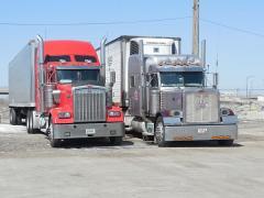Georgia Greens Shipments Hit;  FL Citrus Shipping Update