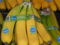 Bananas Account for Over 50% of Fresh Fruit Imports.
