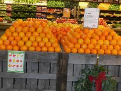 Bee Sweet Citrus Sees Strong Summer Import Season; Apples in Storage Up over Last Year