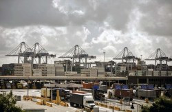 Port of Savannah is Receiving More Imported Produce