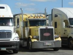 Refrigerated Truckers to Face New Food Safety Rules