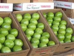 Solution to Florida Tomato Dumping Found?