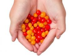 NatureFresh Farms & Eminent Seeds NL Introduce the World's Smallest Tomato