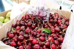 Chilean Cherries Forecast has Big Increase