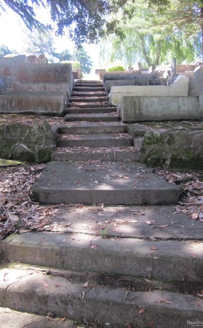 Park Island Cemetery – Napier