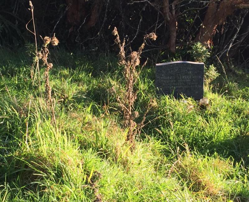 Bragg Bay Cemetery – Stewart Island