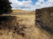 Otuataua Stonefields