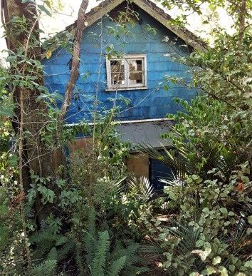 Abandoned Art School – Huia