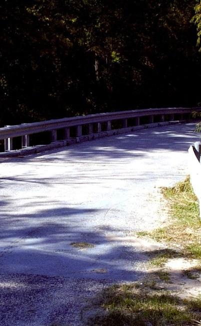 Donkey Lady Bridge