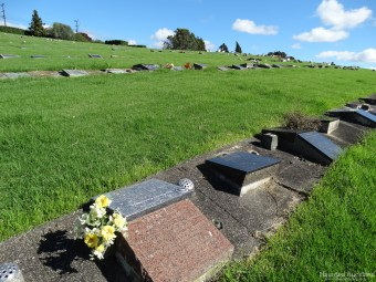 Birkenhead/Glenfield Cemetery views