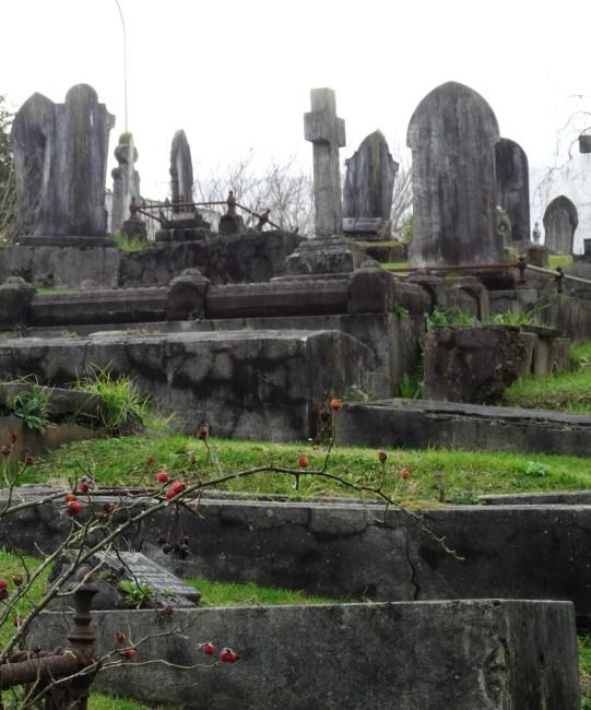 Pompallier Cemetery – Birkenhead, Auckland.