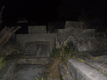 Hillsborough Cemetery 42