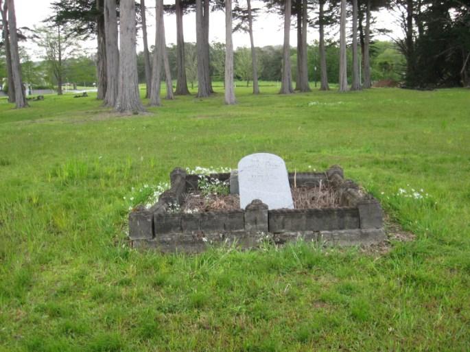 Kioreroa Cemetery 19