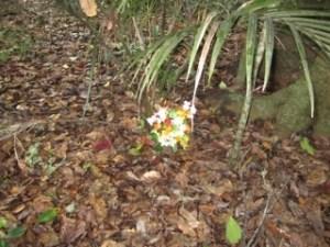 Maunu Cemetery 12