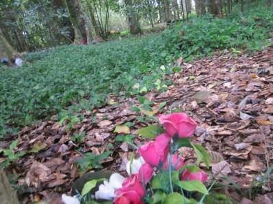 Maunu Cemetery 21