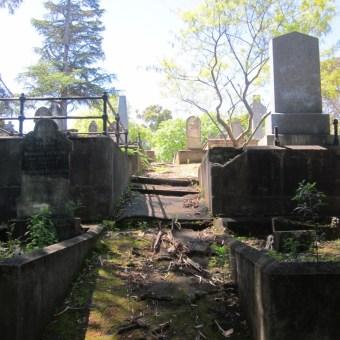 Old Napier Cemetery 11