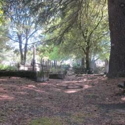 Old Napier Cemetery 15