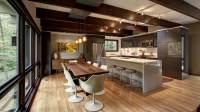 Mid Century Modern Renovation  HAUS | Architecture