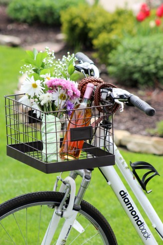 haus2home-diy-bike-basket-4
