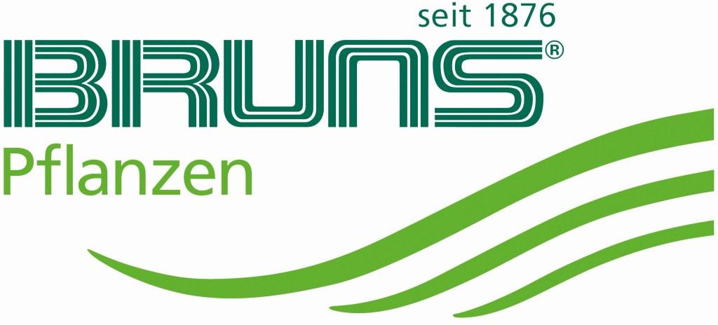 Logo Bruns sf5