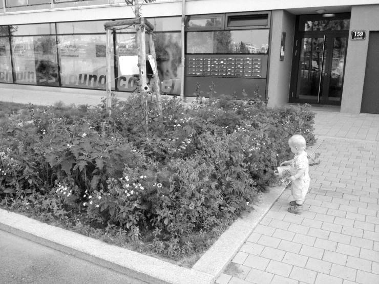 05_Baumscheibe_Nordbahnhof_(c)peter-rippl