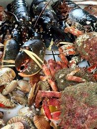 Fischmarkt in Le Havre