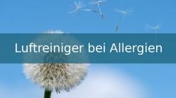 Luftreiniger bei Allergien 248 x 138