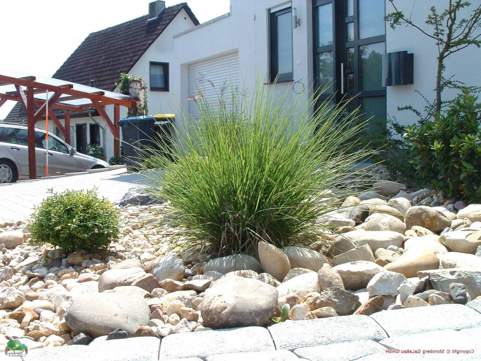 Gartengestaltung Mit Gräsern Und Kies Hangbegrenzung Vorgarten