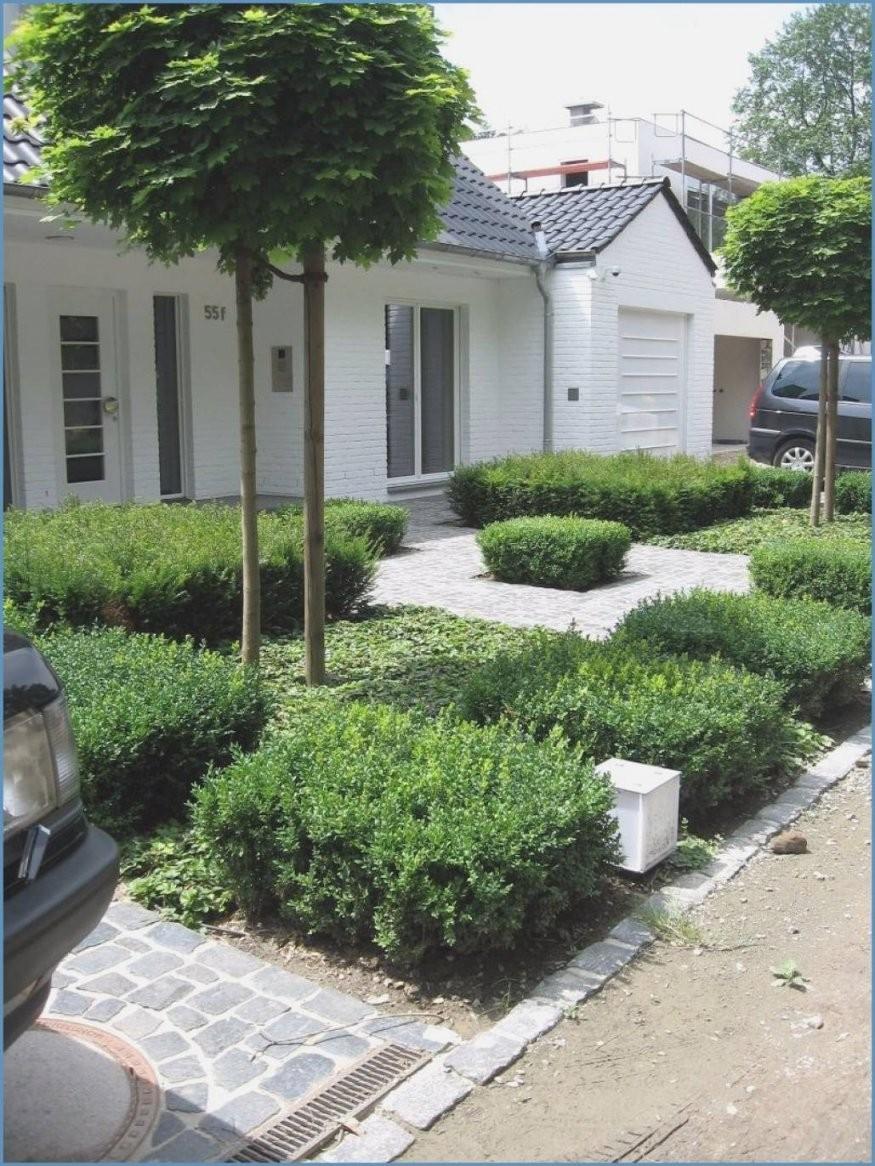 Vorgarten Gestalten Mit Kies Und Grsern  Haus Design Ideen